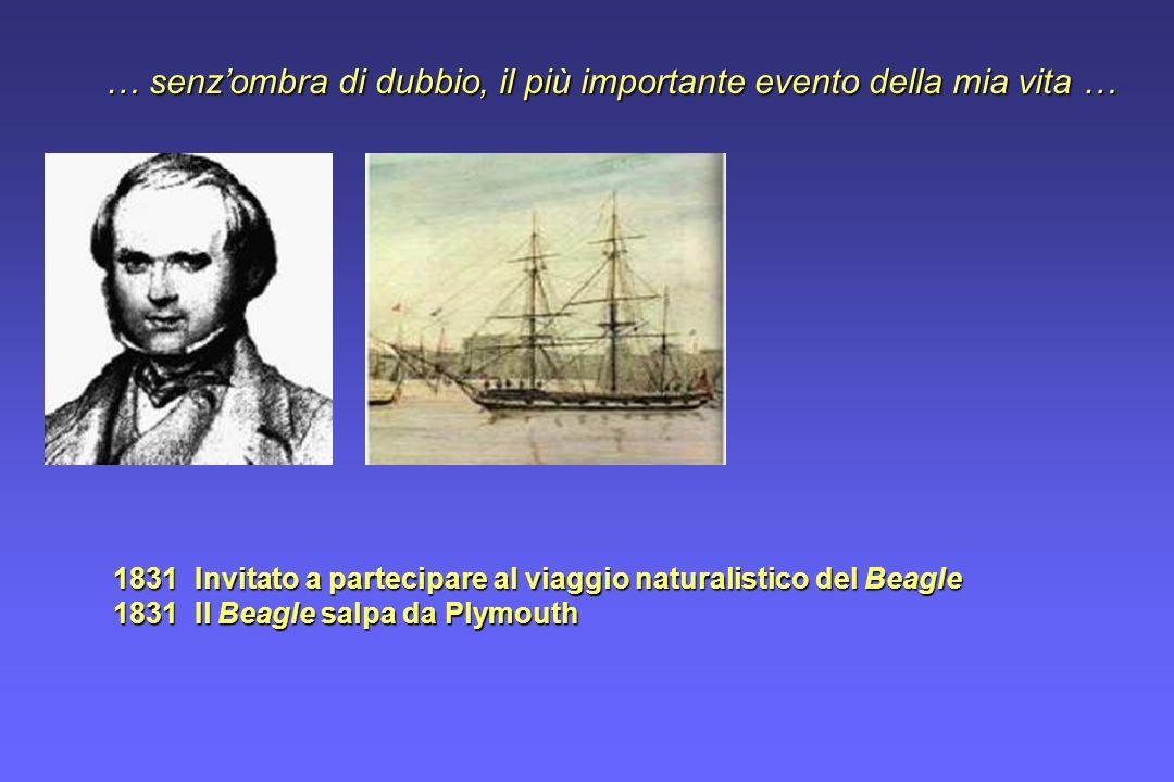 1831 Invitato a partecipare al viaggio naturalistico del Beagle 1831 Il Beagle salpa da Plymouth … senzombra di dubbio, il più importante evento della