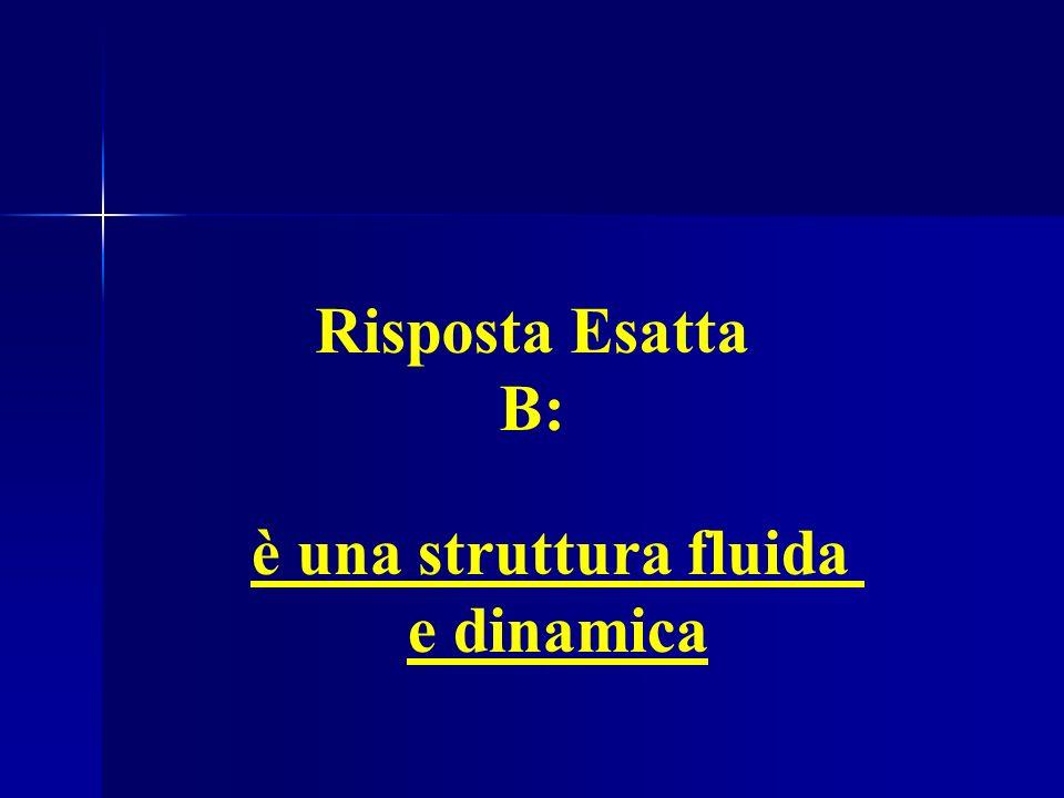 ES.7: La Membrana Plasmatica è una struttura fluida e dinamica Risposta Esatta B: