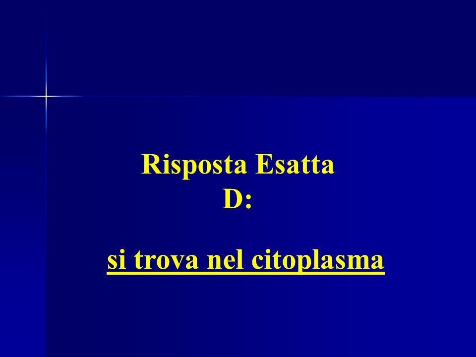 Es. 8: Il Reticolo Endoplasmatico si trova nel citoplasma Risposta Esatta D: