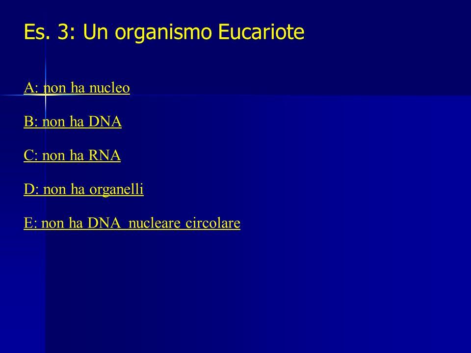 Es. 3: Un organismo Eucariote A: non ha nucleo B: non ha DNA C: non ha RNA D: non ha organelli E: non ha DNA nucleare circolare