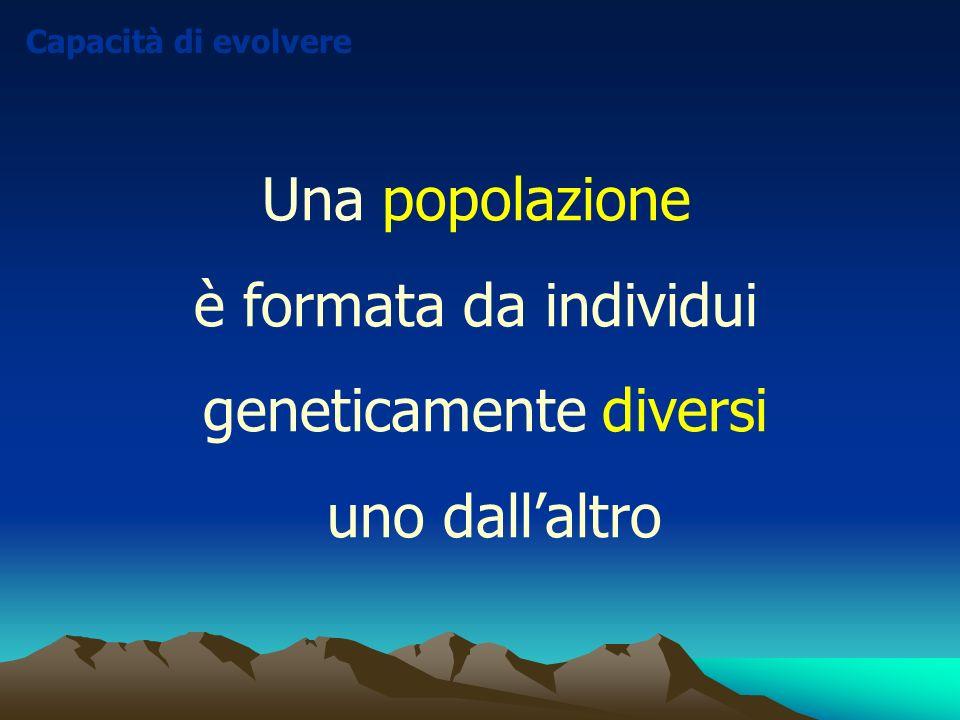 Una popolazione è formata da individui geneticamente diversi uno dallaltro Capacità di evolvere