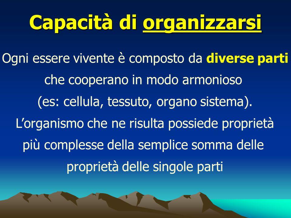 Capacità di organizzarsi Ogni essere vivente è composto da diverse parti che cooperano in modo armonioso (es: cellula, tessuto, organo sistema). Lorga
