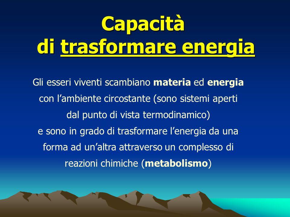 Capacità di trasformare energia Gli esseri viventi scambiano materia ed energia con lambiente circostante (sono sistemi aperti dal punto di vista term
