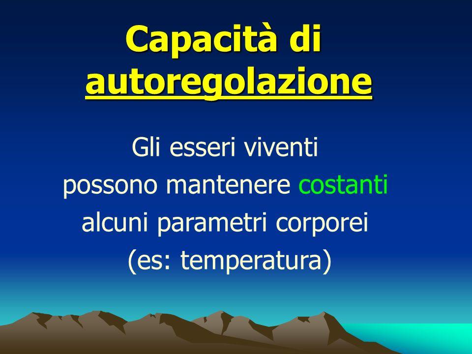 Capacità di autoregolazione Gli esseri viventi possono mantenere costanti alcuni parametri corporei (es: temperatura)