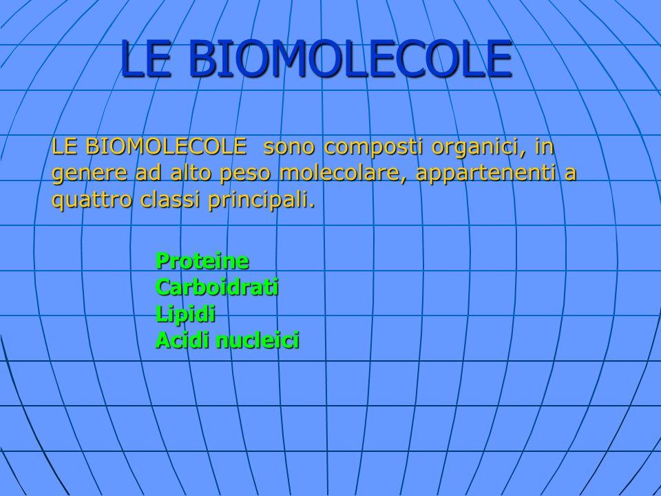 LE BIOMOLECOLE LE BIOMOLECOLE sono composti organici, in genere ad alto peso molecolare, appartenenti a quattro classi principali. ProteineCarboidrati
