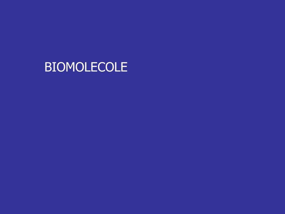 BIOMOLECOLE