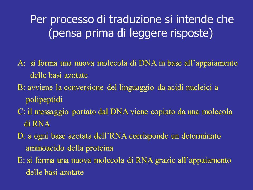 Per processo di traduzione si intende che (pensa prima di leggere risposte) A: si forma una nuova molecola di DNA in base allappaiamento delle basi az