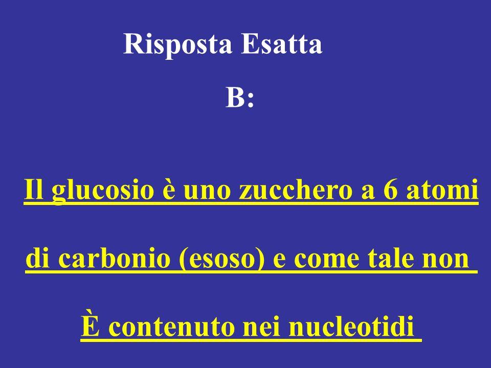 Risposta Esatta B: Il glucosio è uno zucchero a 6 atomi di carbonio (esoso) e come tale non È contenuto nei nucleotidi