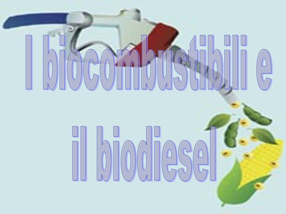 Conclusioni Da tutti gli studi ed i dati emerge quanto sia vantaggioso e auspicabile lutilizzo di fonti energetiche PULITE e RINNOVABILI come il Biodiesel.
