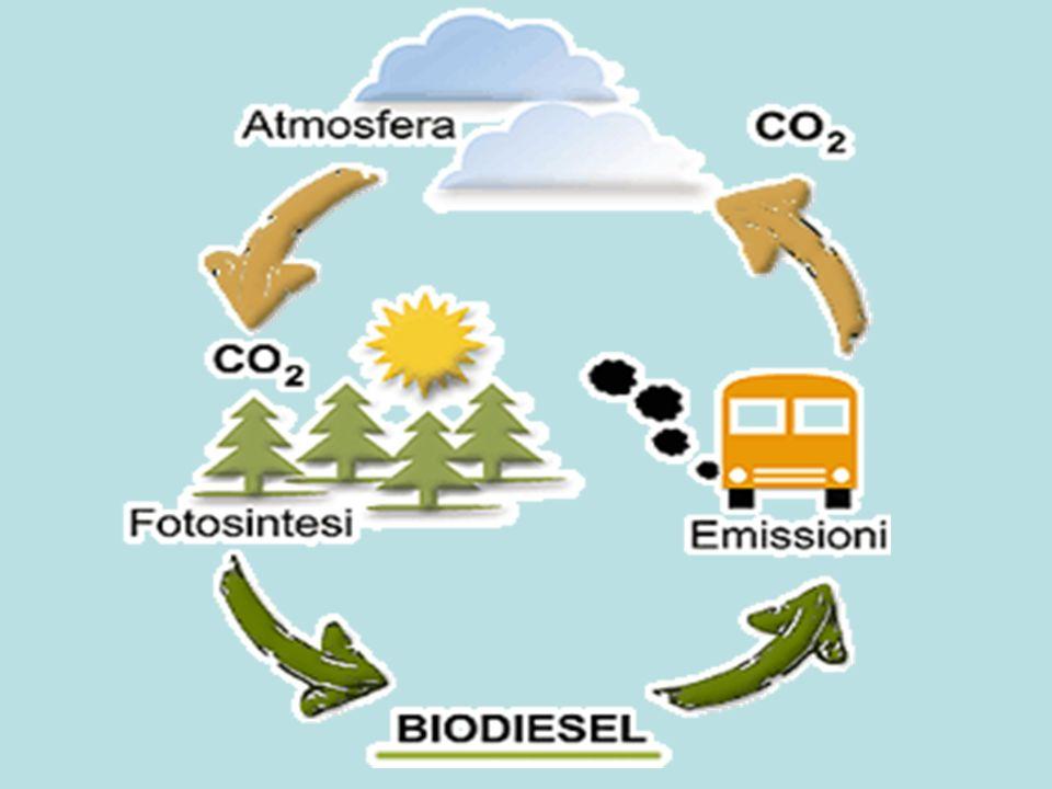 Perché i biocombustibili hanno meno impatto ambientale rispetto ai combustibili fossili??