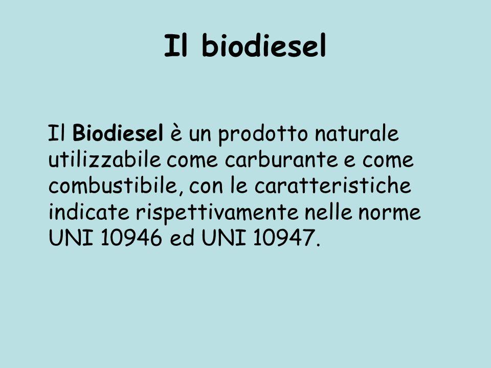 Un biocombustibile è un combustibile non fossile rinnovabile che viene prodotto da fermentazione di microrganismi o dalla lavorazione di estratti vege