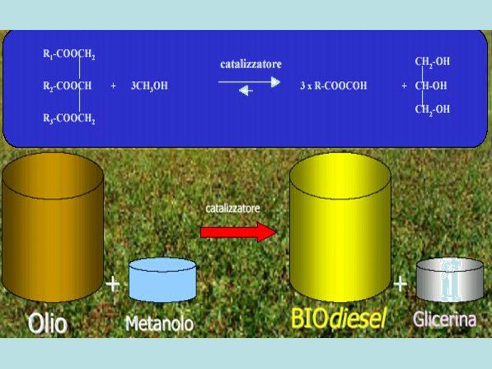 La reazione avviene per passaggi intermedi: TG + CH3OH + cataliz DG + ME DG + CH3OH + cataliz. MG + ME MG + CH3OH + cataliz. GL + ME TG ( Trigliceride