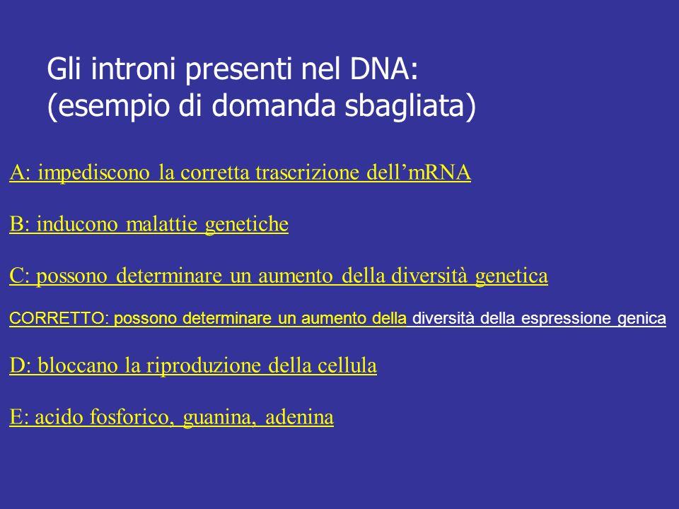 Gli introni presenti nel DNA: (esempio di domanda sbagliata) A: impediscono la corretta trascrizione dellmRNA B: inducono malattie genetiche C: posson