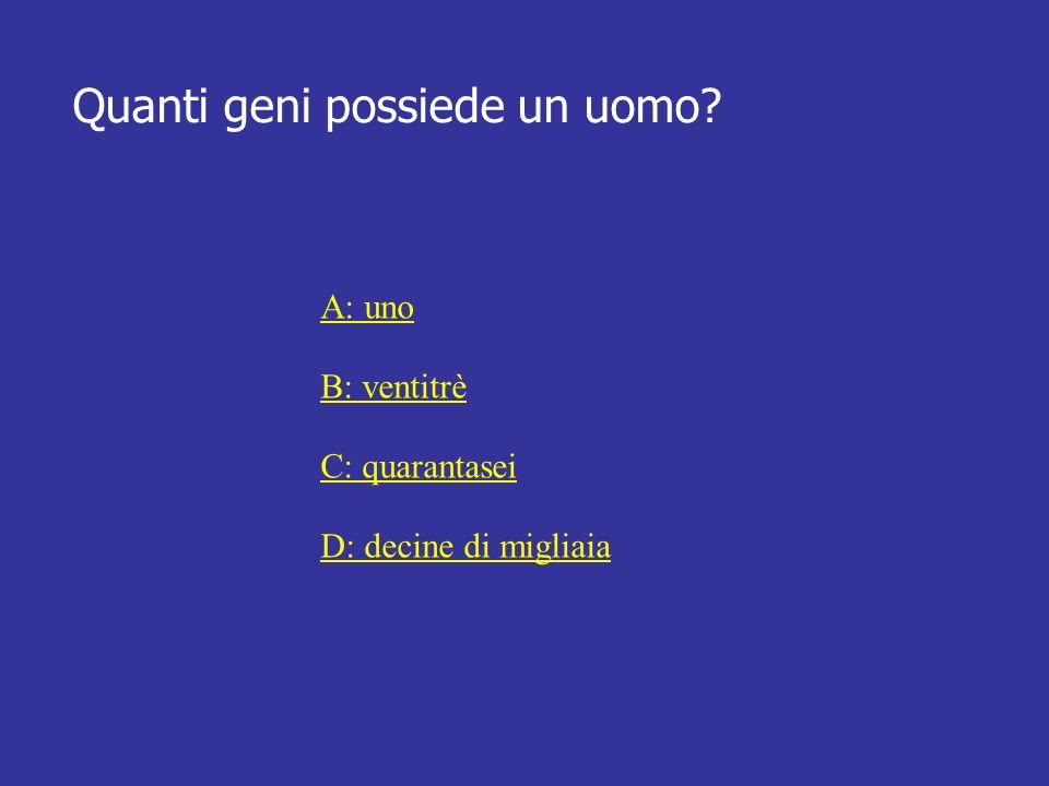 Quanti geni possiede un uomo? A: uno B: ventitrè C: quarantasei D: decine di migliaia