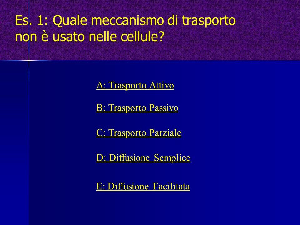 Es. 1: Quale meccanismo di trasporto non è usato nelle cellule? A: Trasporto Attivo B: Trasporto Passivo C: Trasporto Parziale D: Diffusione Semplice