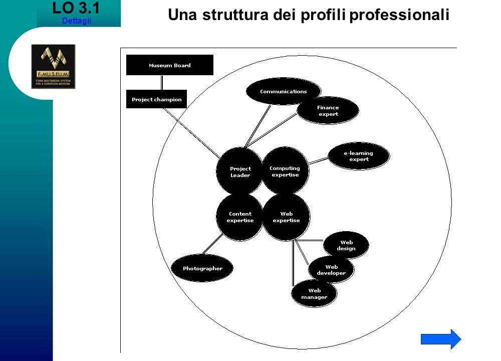 LO 3.1 Dettagli Una struttura dei profili professionali