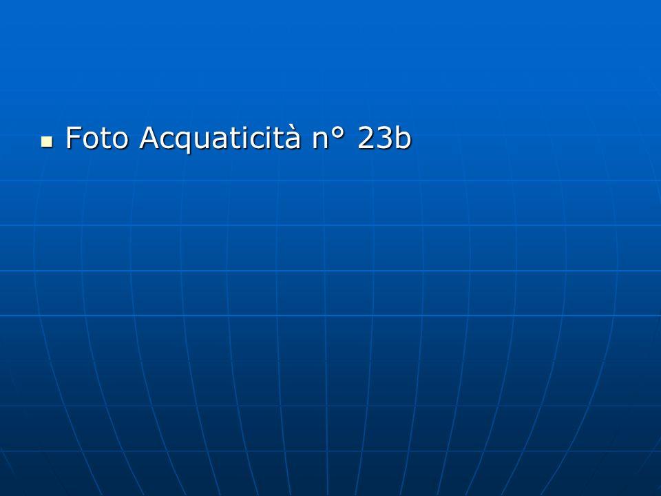 Foto Acquaticità n° 23b Foto Acquaticità n° 23b