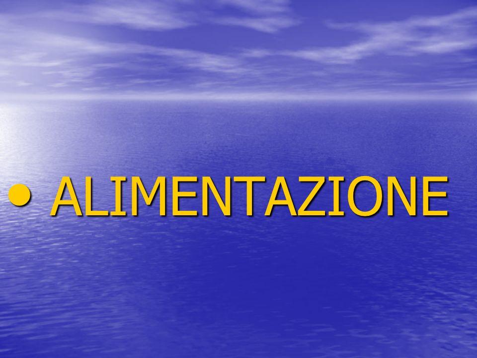 ALIMENTAZIONE ALIMENTAZIONE