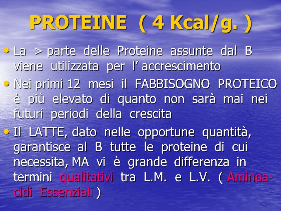 PROTEINE ( 4 Kcal/g. ) La > parte delle Proteine assunte dal B viene utilizzata per l accrescimento La > parte delle Proteine assunte dal B viene util