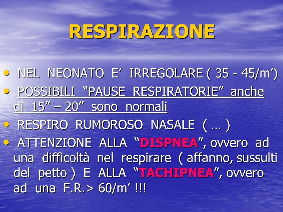 RESPIRAZIONE NEL NEONATO E IRREGOLARE ( 35 - 45/m) NEL NEONATO E IRREGOLARE ( 35 - 45/m) POSSIBILI PAUSE RESPIRATORIE anche di 15 – 20 sono normali PO