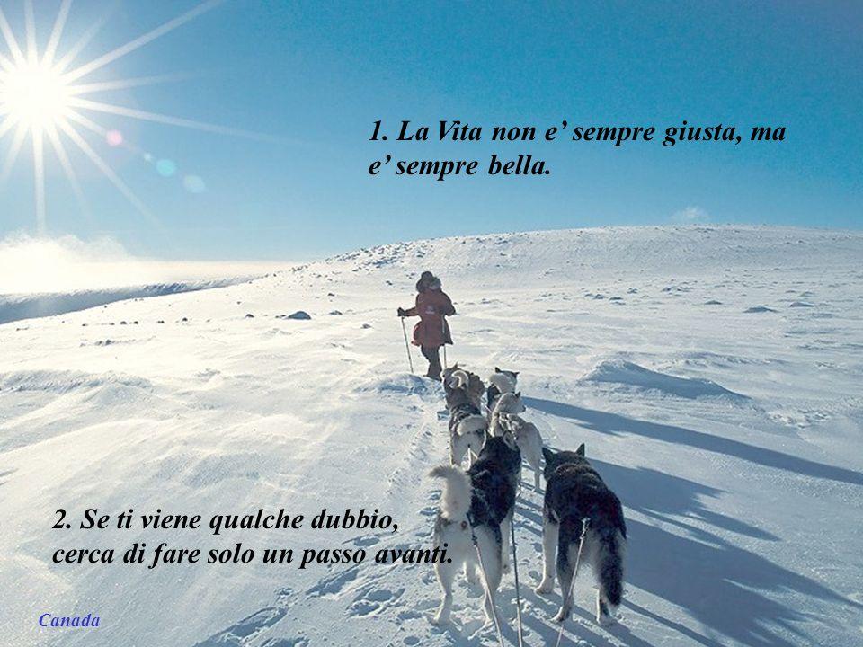 Norvegia – Šiaurės pašvaistė 45 Lezioni di Vita Nov 2009 He YanMusic: snowdream