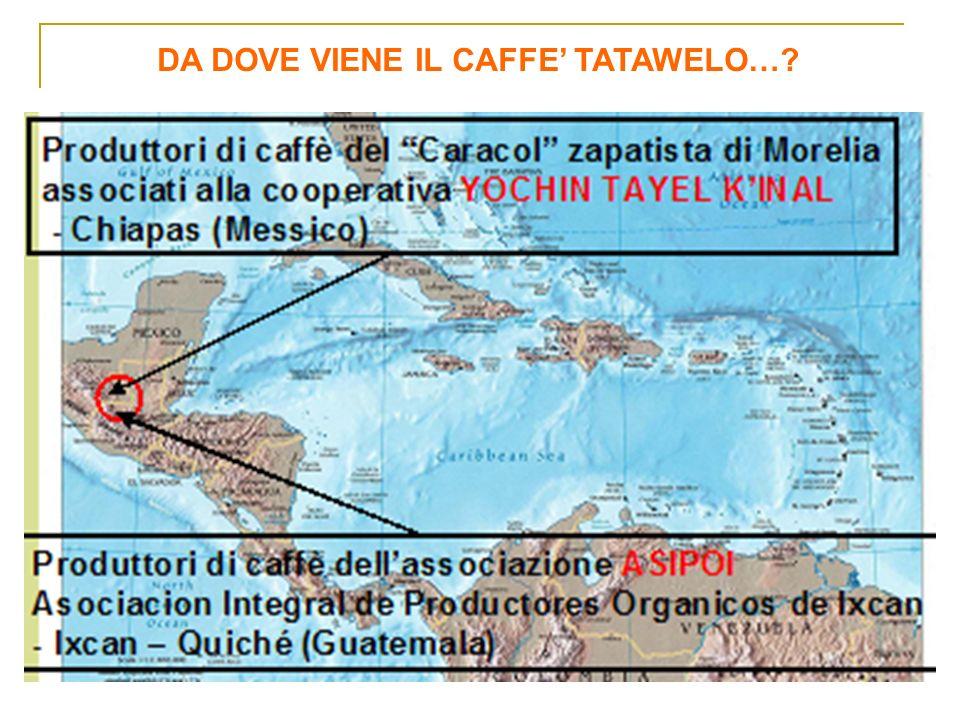 DA DOVE VIENE IL CAFFE TATAWELO…?