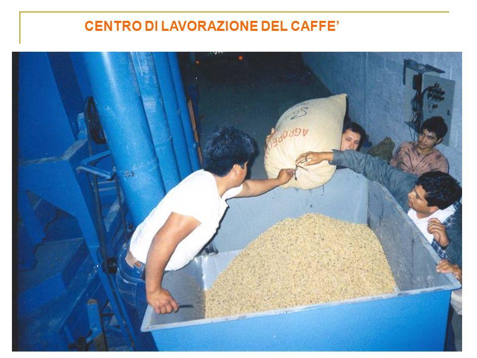 CENTRO DI LAVORAZIONE DEL CAFFE