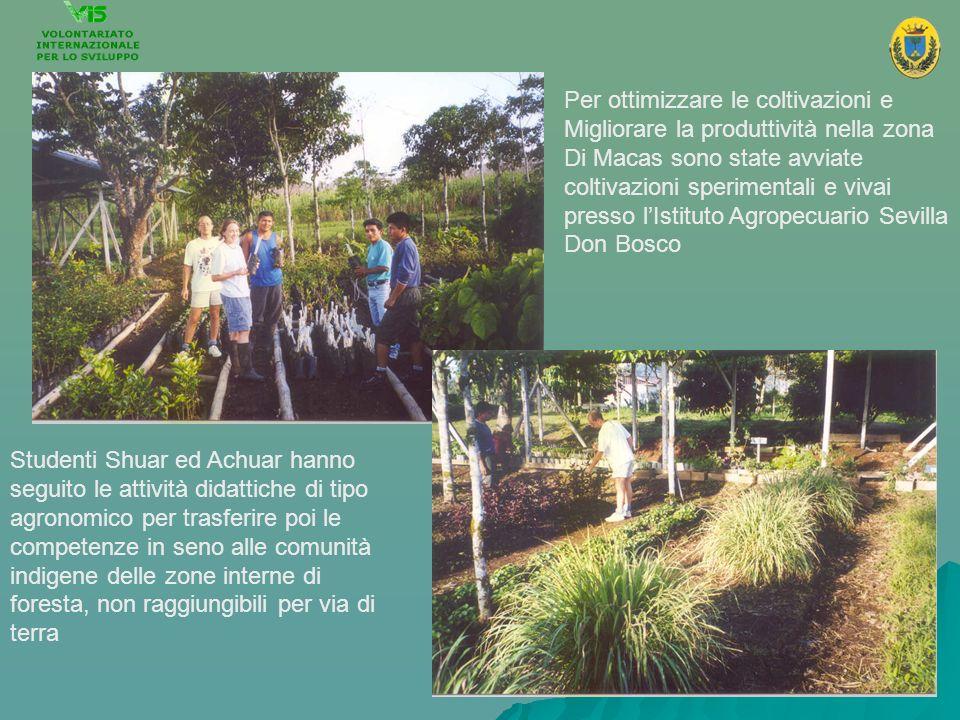 Per ottimizzare le coltivazioni e Migliorare la produttività nella zona Di Macas sono state avviate coltivazioni sperimentali e vivai presso lIstituto
