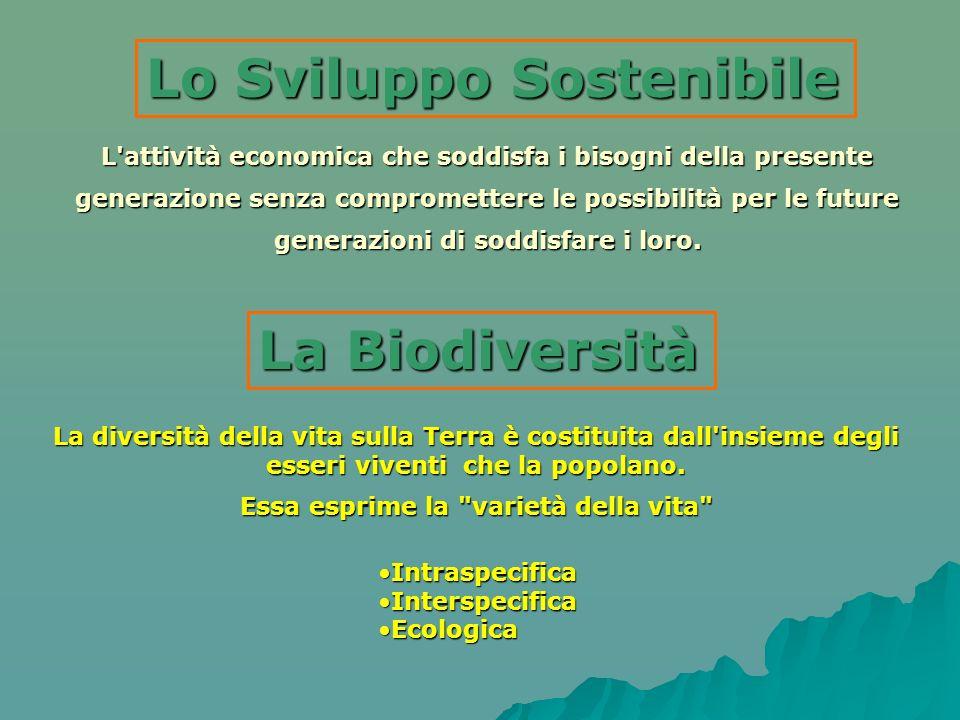L'attività economica che soddisfa i bisogni della presente generazione senza compromettere le possibilità per le future generazioni di soddisfare i lo