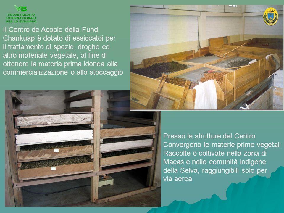 Il Centro de Acopio della Fund. Chankuap è dotato di essiccatoi per il trattamento di spezie, droghe ed altro materiale vegetale, al fine di ottenere