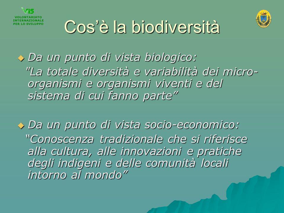 Cosè la biodiversità Da un punto di vista biologico: Da un punto di vista biologico:
