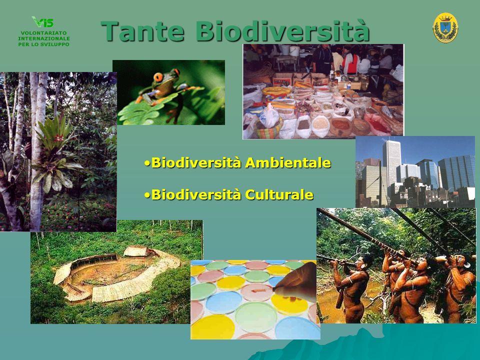 La Distribuzione Planetaria della Biodiversità