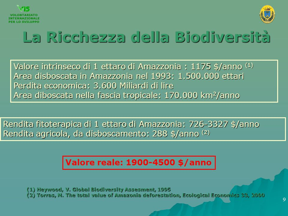 La Ricchezza della Biodiversità Valore intrinseco di 1 ettaro di Amazzonia : 1175 $/anno (1) Area disboscata in Amazzonia nel 1993: 1.500.000 ettari P