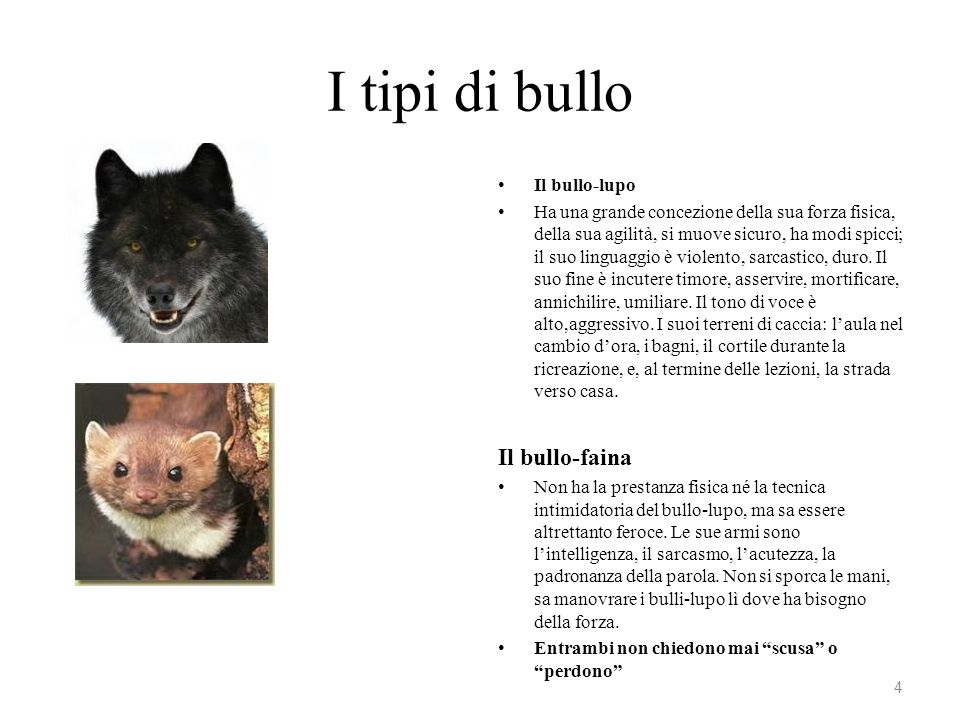 I tipi di bullo Il bullo-lupo Ha una grande concezione della sua forza fisica, della sua agilità, si muove sicuro, ha modi spicci; il suo linguaggio è
