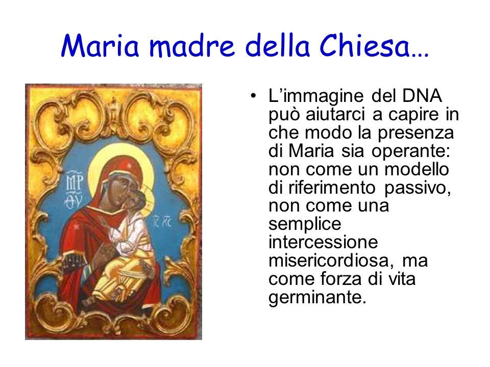 Limmagine del DNA può aiutarci a capire in che modo la presenza di Maria sia operante: non come un modello di riferimento passivo, non come una sempli