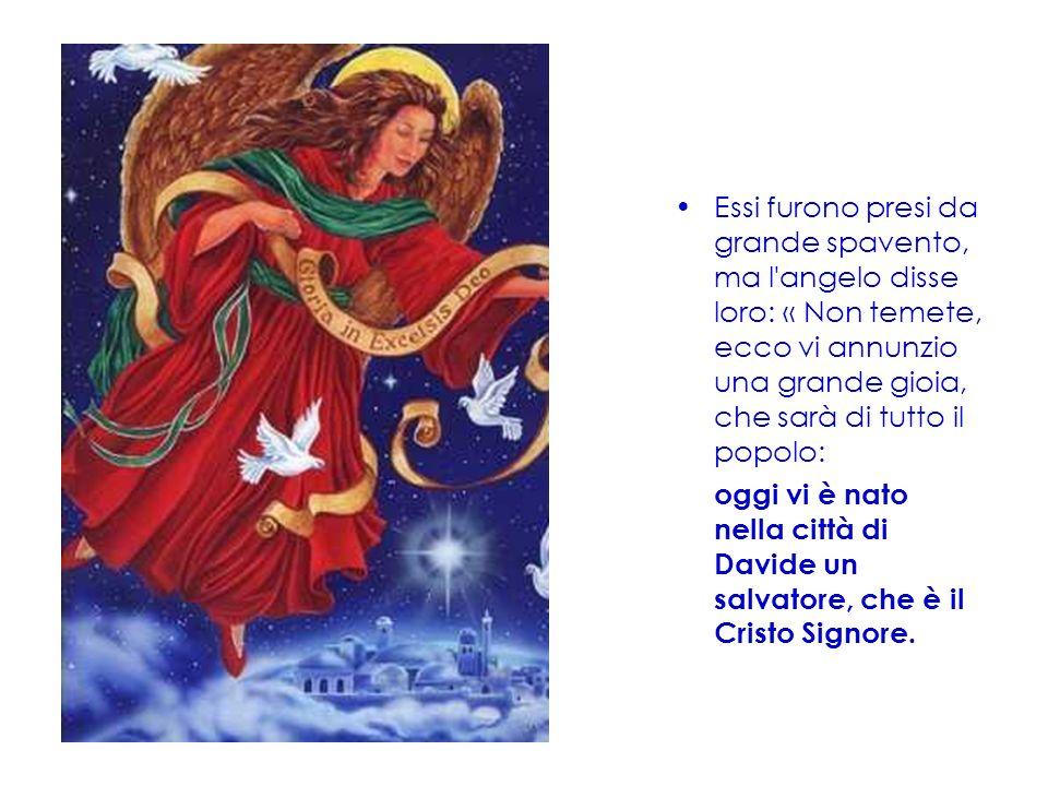 Essi furono presi da grande spavento, ma l'angelo disse loro: « Non temete, ecco vi annunzio una grande gioia, che sarà di tutto il popolo: oggi vi è
