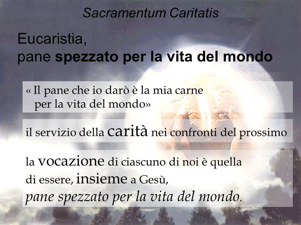 Sacramentum Caritatis Eucaristia, pane spezzato per la vita del mondo « Il pane che io darò è la mia carne per la vita del mondo» il servizio della ca