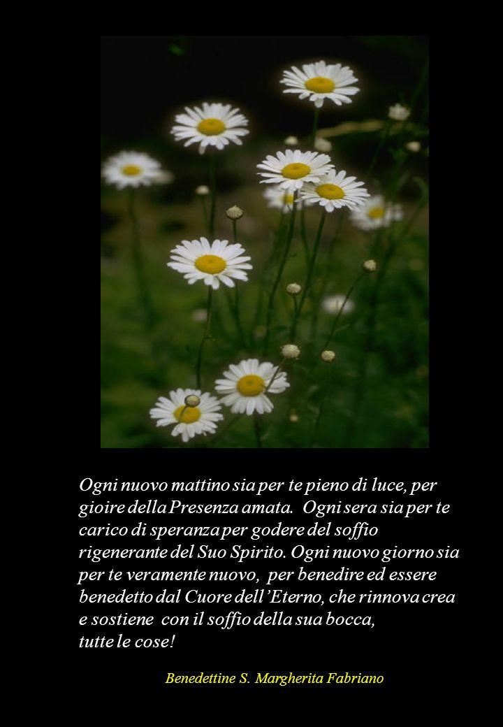 Ogni nuovo mattino sia per te pieno di luce, per gioire della Presenza amata. Ogni sera sia per te carico di speranza per godere del soffio rigenerant