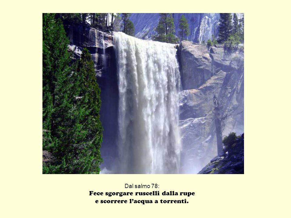 Dal salmo 78: Fece sgorgare ruscelli dalla rupe e scorrere lacqua a torrenti.