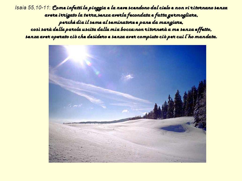 Isaia 55,10-11: Come infatti la pioggia e la neve scendono dal cielo e non vi ritornano senza avere irrigato la terra,senza averla fecondata e fatta g