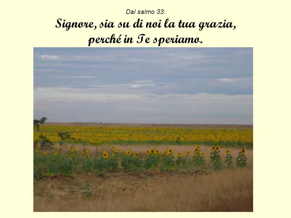 Dal salmo 33: Signore, sia su di noi la tua grazia, perché in Te speriamo.