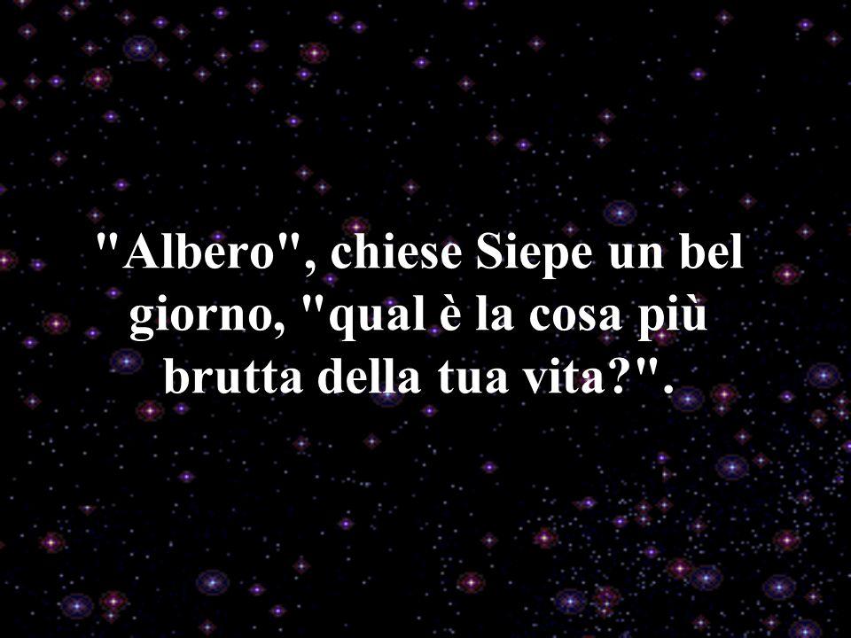 Albero , chiese Siepe un bel giorno, qual è la cosa più brutta della tua vita .