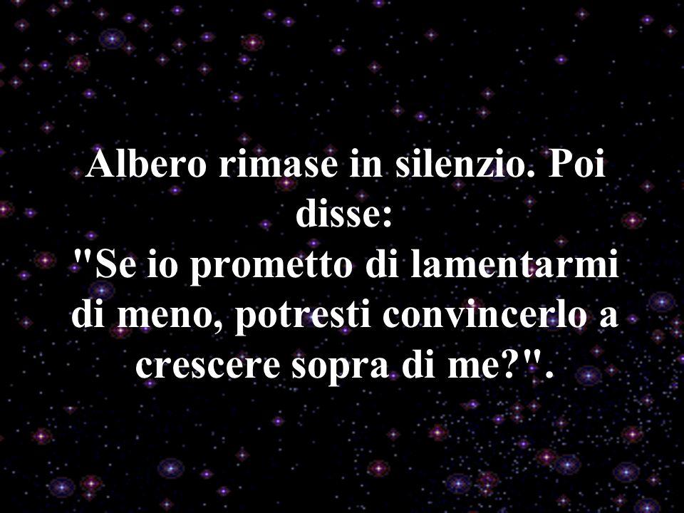 Albero rimase in silenzio.