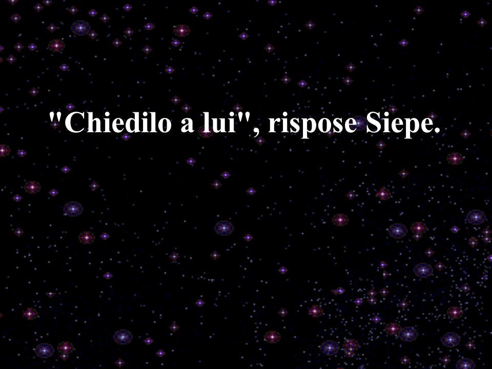 Chiedilo a lui , rispose Siepe.