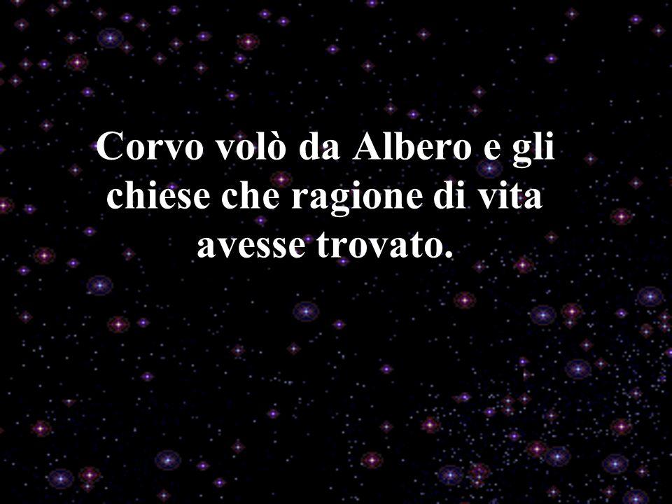 Corvo volò da Albero e gli chiese che ragione di vita avesse trovato.
