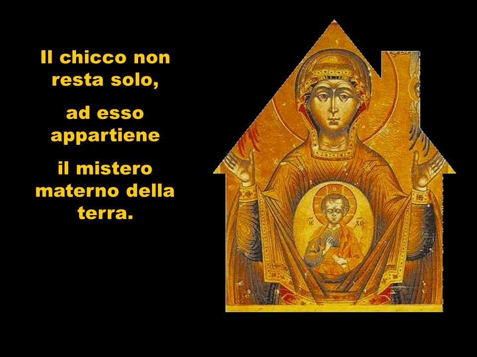 Maria vive in modo da essere un luogo per Dio.