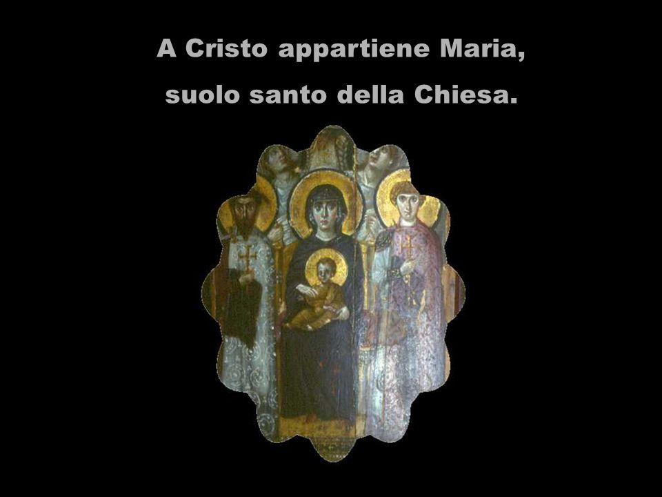 Maria vive nella dimensione comune della Storia Sacra, così quando ci guarda, ci guarda tutto il vero Israele.