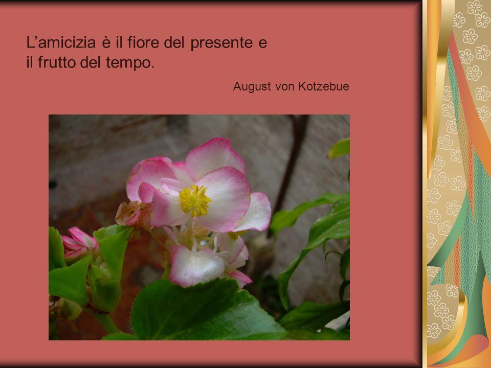 Lamicizia è il fiore del presente e il frutto del tempo. August von Kotzebue