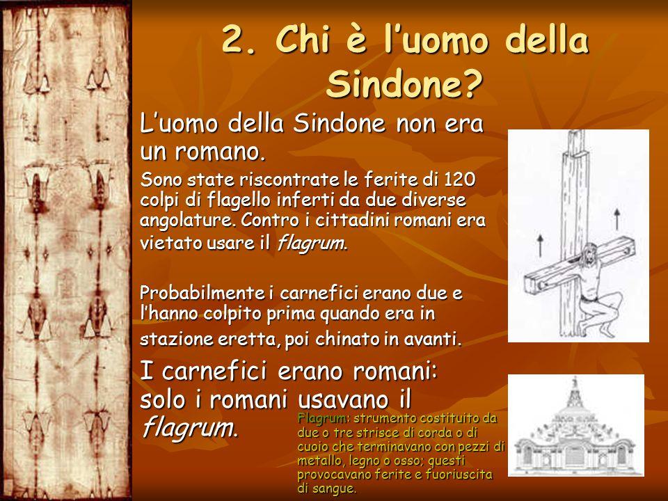 Luomo della Sindone non era un romano. Luomo della Sindone non era un romano. Sono state riscontrate le ferite di 120 colpi di flagello inferti da due