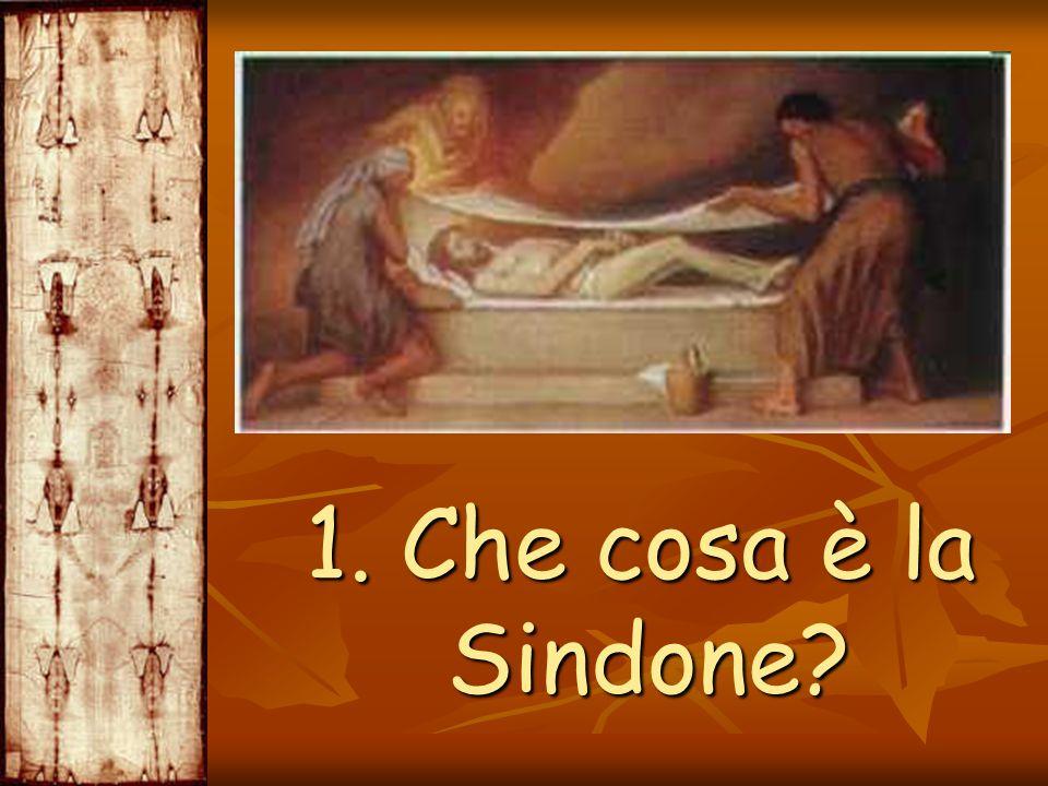 3.Come è arrivata la Sindone a Torino.